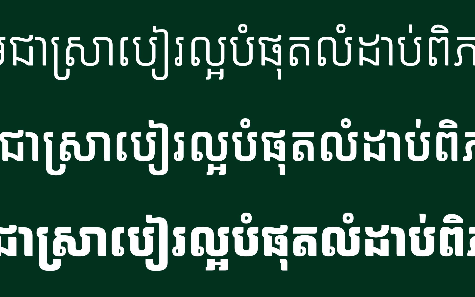 Carlsberg-Sans-Type-Design-14