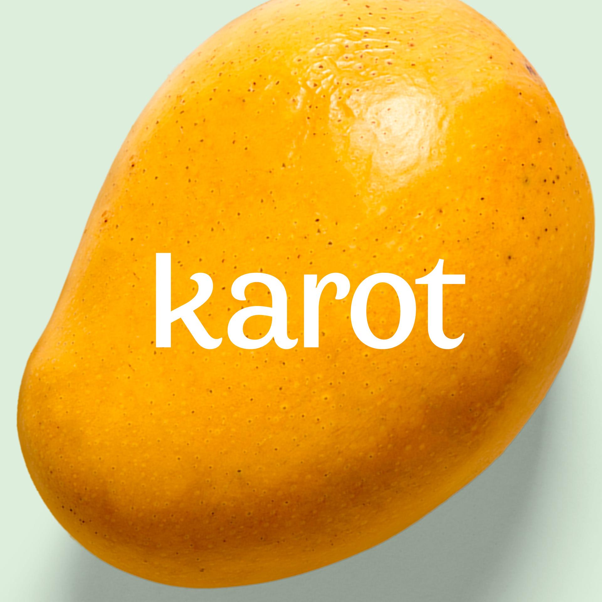 Karot-Brand-Identity-Design-15
